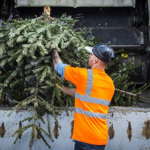 kerstboom_inleveren